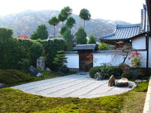 Dvd сады и храмы японии